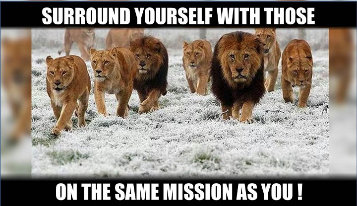 find your own tribe