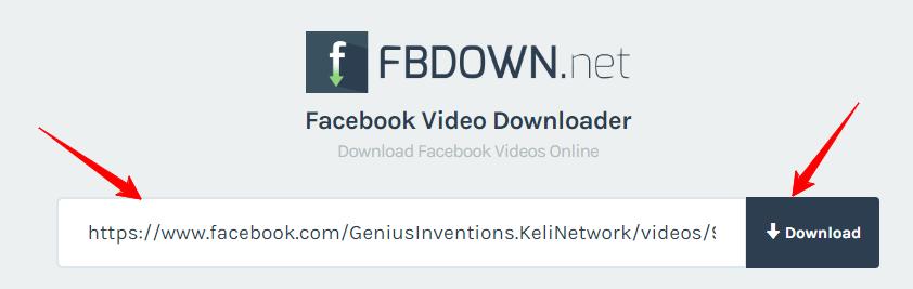 FB down net