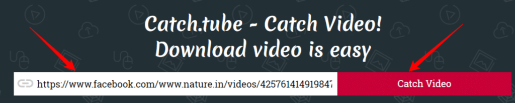 Free Online Video Downloader Catch Video From Any Site